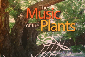 lmj.24a.myftpupload.com music of the plants book